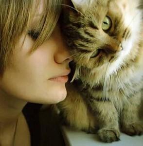 gatti-amore-294x300