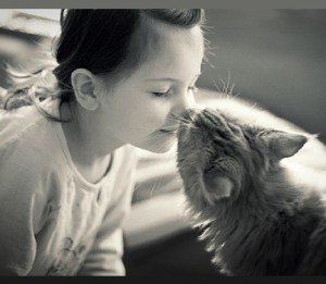 gatto-rapporto-indissolubile-300x261